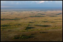 Aerial view of Shark River Slough. Everglades National Park, Florida, USA. (color)