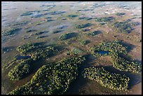 Aerial view of hammocks and fog. Everglades National Park, Florida, USA. (color)