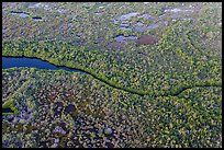 Aerial view of river and mangroves. Everglades National Park, Florida, USA. (color)