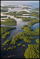 Aerial view of Ten Thousand Islands. Everglades National Park, Florida, USA. (color)