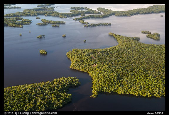 Aerial view of coastal mangrove islands. Everglades National Park (color)