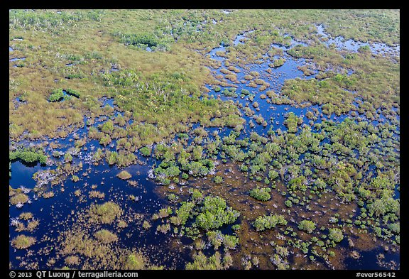 Aerial view of saltwater marsh. Everglades National Park (color)