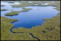 Aerial view of mangrove-fringed lake. Everglades National Park, Florida, USA. (color)