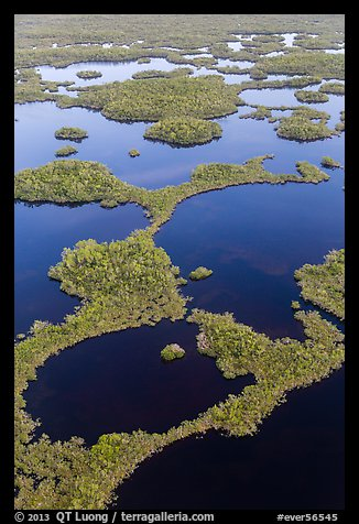 Aerial view of mosaic of lakes and and vegetation. Everglades National Park (color)