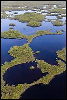 Aerial view of mosaic of lakes and and vegetation. Everglades National Park ( color)