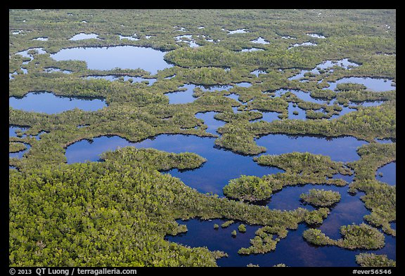 Aerial view of lakes, mangroves and cypress. Everglades National Park (color)