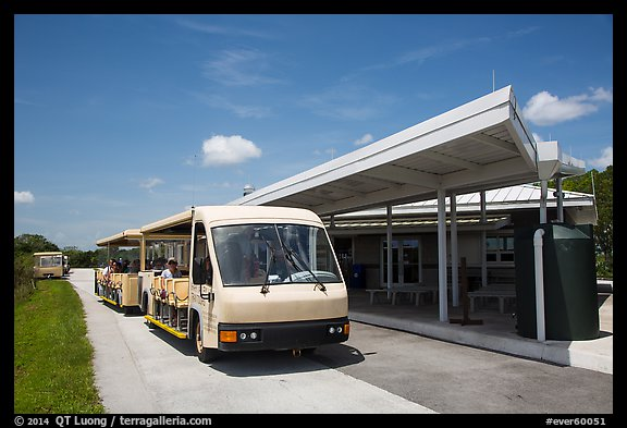 Tram and visitor center, Shark Valley. Everglades National Park (color)