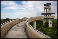 Shark Valley observation tower. Everglades National Park ( color)