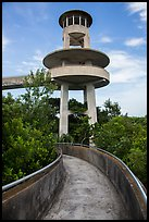 Observation tower, Shark Valley. Everglades National Park ( color)