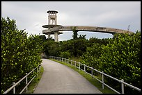 Trail and observation tower, Shark Valley. Everglades National Park ( color)