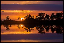 Sun setting, Pines Glades Lake. Everglades National Park ( color)