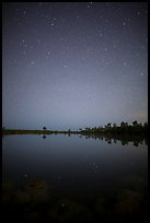 Starry night, Pines Glades Lake. Everglades National Park, Florida, USA.