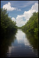 Canal, clouds, and reflections. Everglades National Park ( color)