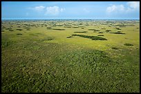 Aerial view of slough and hammocks, Shark Valley. Everglades National Park ( color)