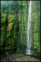 Waimoku Falls, more than 300 feet high. Haleakala National Park, Hawaii, USA. (color)