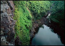 Gorge from the brink of Makahiku falls. Haleakala National Park, Hawaii, USA. (color)