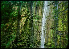 Waimoku Falls, more than 300 feet high. Haleakala National Park ( color)