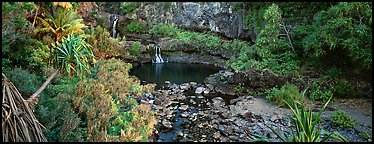 Tropical pools, waterfalls, and vegetation. Haleakala National Park (Panoramic color)