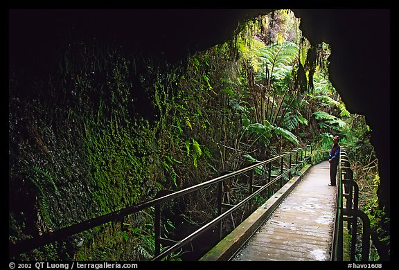 Thurston lava tube seen from inside. Hawaii Volcanoes National Park (color)