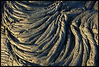 Rope-like hardened pahoehoe lava. Hawaii Volcanoes National Park, Hawaii, USA. (color)