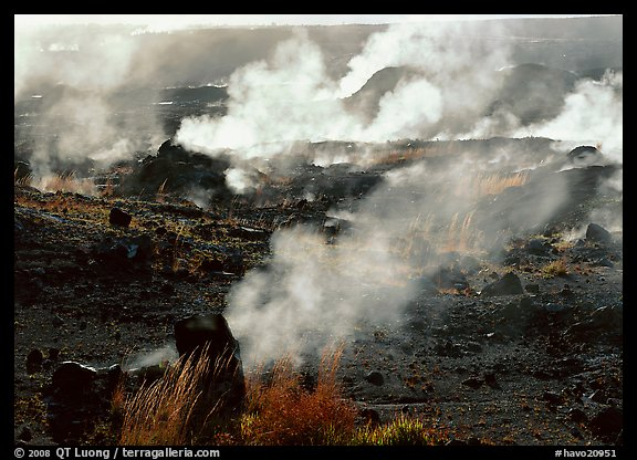 Fumeroles on the rim of Halemaumau crater. Hawaii Volcanoes National Park (color)