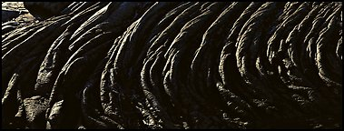 Hardened rope lava riples. Hawaii Volcanoes National Park (Panoramic color)