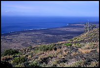View of the coastal plain from Hilana Pali. Hawaii Volcanoes National Park, Hawaii, USA.