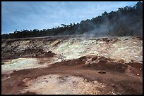 Sulphur deposits and vents (Haakulamanu). Hawaii Volcanoes National Park, Hawaii, USA. (color)