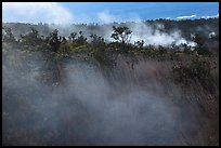 Steam vents. Hawaii Volcanoes National Park, Hawaii, USA. (color)