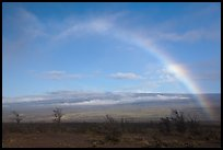 Rainbow and Mauna Loa. Hawaii Volcanoes National Park, Hawaii, USA.