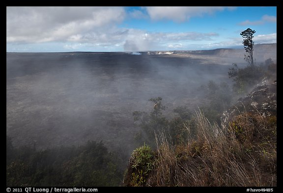 Steam from vents at the edge of Kilauea caldera. Hawaii Volcanoes National Park (color)
