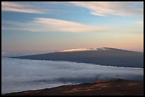 Snowy Mauna Loa above clouds at sunrise. Hawaii Volcanoes National Park, Hawaii, USA.