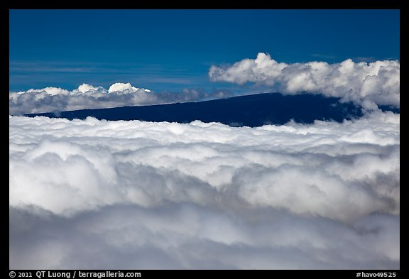 Mauna Loa emerging above clouds. Hawaii Volcanoes National Park (color)