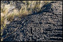 Lava slab covered with petroglyphs. Hawaii Volcanoes National Park, Hawaii, USA. (color)