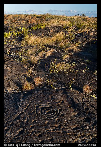Archaeological site of Puu Loa. Hawaii Volcanoes National Park (color)