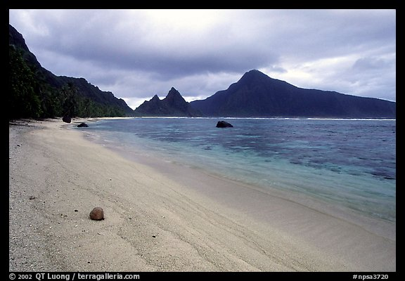 Fallen coconut on South Beach, Ofu Island. National Park of American Samoa (color)