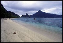 Fallen coconut on South Beach, Ofu Island. National Park of American Samoa