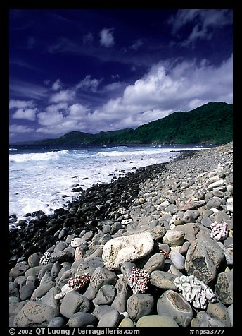 Coral heads on beach and dark hills, Tutuila Island. National Park of American Samoa (color)