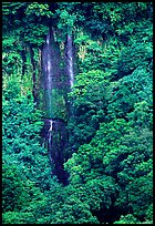 Ephemeral waterfall in Amalau Valley, Tutuila Island. National Park of American Samoa