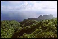 Tropical forest and Ocean from Mont Alava, Tutuila Island. National Park of American Samoa ( color)