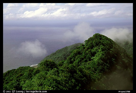 Forested ridges and Pacific Ocean from Mont Alava, Tutuila Island. National Park of American Samoa (color)