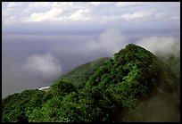 Forested ridges and Pacific Ocean from Mont Alava, Tutuila Island. National Park of American Samoa