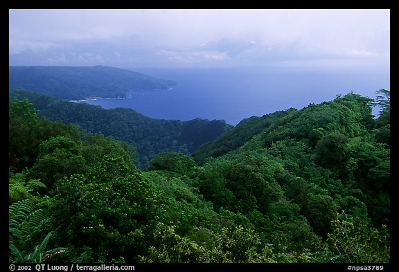 View from Mont Alava, Tutuila Island. National Park of American Samoa (color)