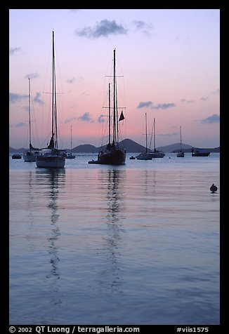 Sailboats in Cruz Bay harbor at sunset. Virgin Islands National Park (color)