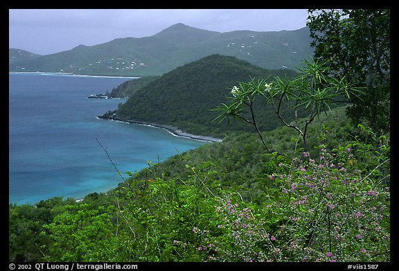 Hurricane Hole. Virgin Islands National Park (color)