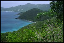 Hurricane Hole. Virgin Islands National Park ( color)