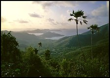 View over East end of island. Virgin Islands National Park, US Virgin Islands.
