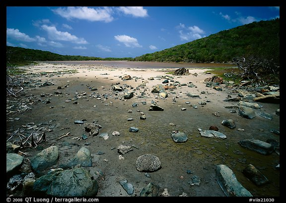 Salt Pond. Virgin Islands National Park (color)
