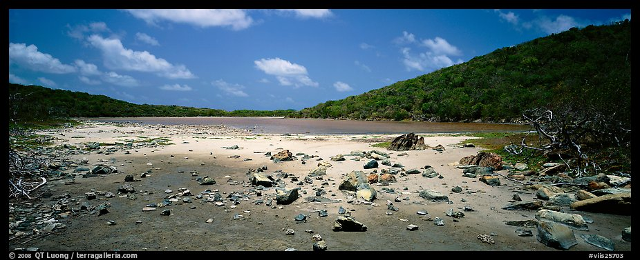 Pond with quicksand. Virgin Islands National Park (color)