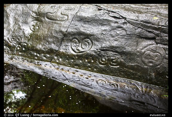 Reef Bay Trail petroglyphs. Virgin Islands National Park (color)